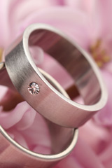 titanium rings on pink flowers
