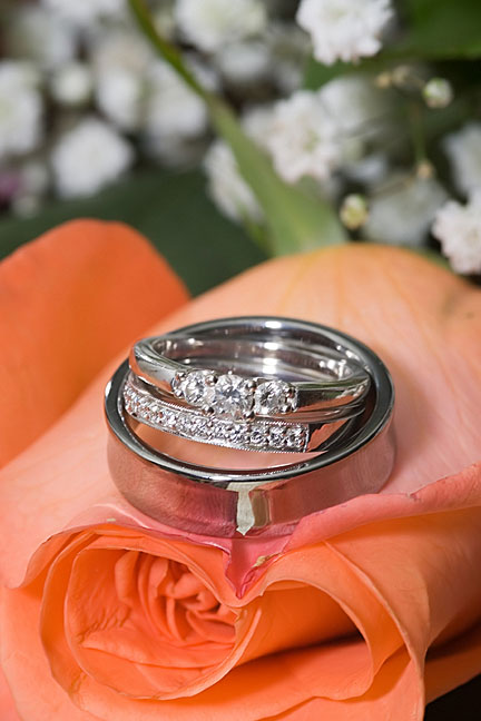 titanium wedding rings resting on a rose